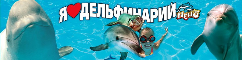 Дельфинарий Немо в Коблево