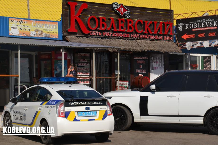 полиция коблево
