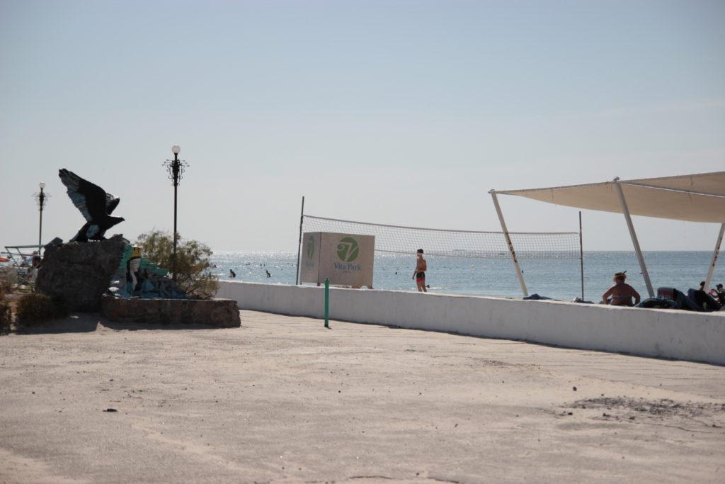 море коблево черноморец