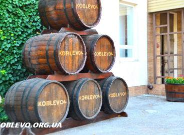 Экскурсия на винзавод Коблево от Дюк Ришелье в фото