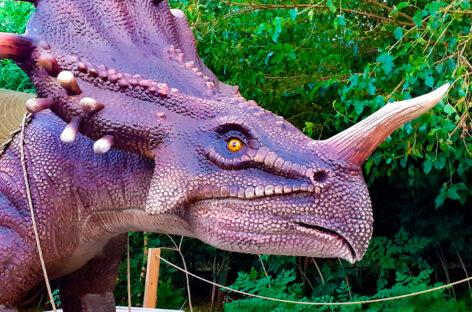 Парк динозавров в Коблево. Дино-парк, интересно всем